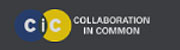 collaboration-in-common-icon